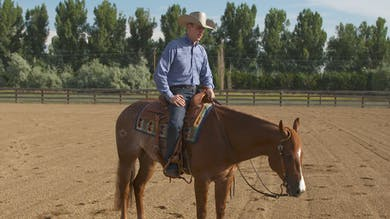 Bud Lyon: Lope to Trot Transition by Horse&Rider OnDemand