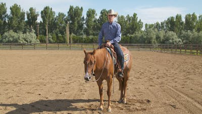 Bud Lyon: Guiding New Horse by Horse&Rider OnDemand