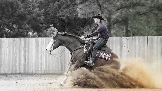 Reining by Horse&Rider OnDemand