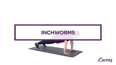 CHALLENGE: INCHWORMS by MyCurves On Demand