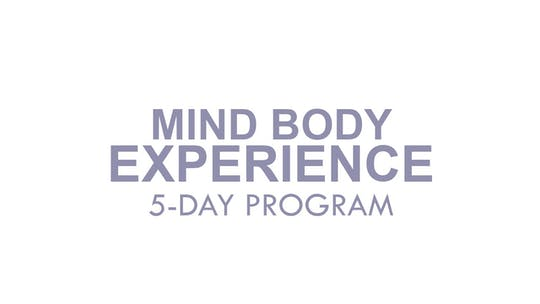 MIND BODY EXPERIENCE by The Movement