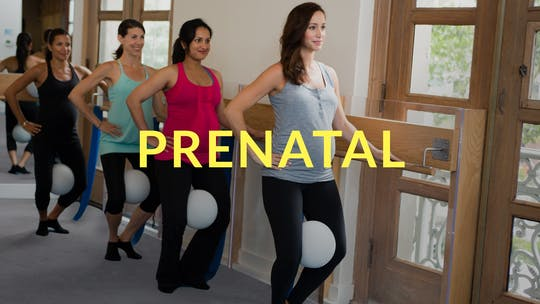Prenatal by Physique 57