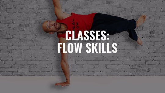 Classes:  Flow Skills Classes by Animal Flow