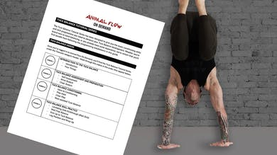 Tuck Balance Overview: How To Use These Tutorials by Animal Flow
