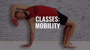 Classes: Mobility by Animal Flow