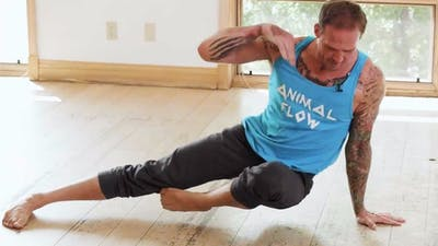 Mike's Flow Class #27A (Intermediate/Advanced) by Animal Flow