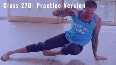 Mike's Flow Class #27B  (Intermediate/Advancced) PRACTICE by Animal Flow