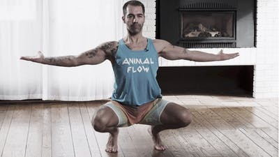 Flow with Sascha #7 (Beginner to Intermediate) by Animal Flow