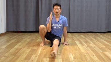 Tips:  Front Kickthrough Variations by Animal Flow