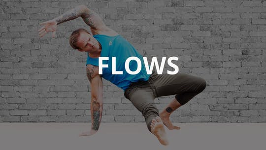 FLOWS by Animal Flow