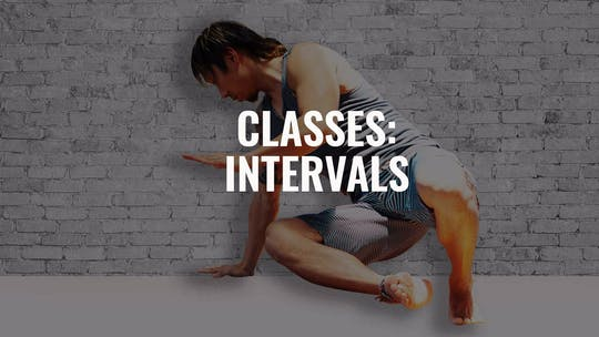 Classes: Intervals by Animal Flow