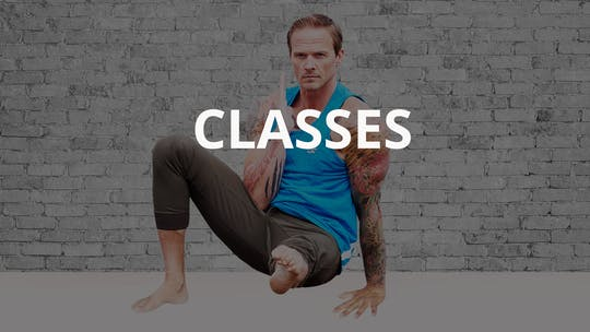 CLASSES by Animal Flow