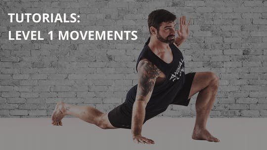 Tutorials: Level 1 Movements by Animal Flow