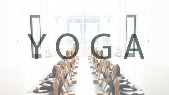 YOGA by Romney Studios