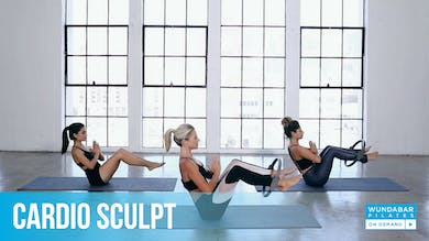 CARDIO SCULPT by WundaBar Pilates