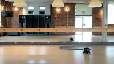 Barre Press with Brittany 50 mins by Barre Body Studio