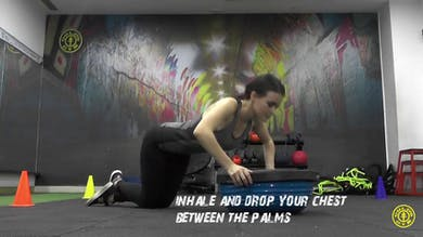 Bosu Ball Push Up by Gold's Gym Anywhere
