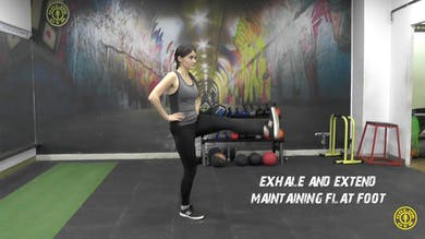 Standing Knee Extension by Gold's Gym Anywhere