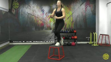 Step up to Knee Raise by Gold's Gym Anywhere