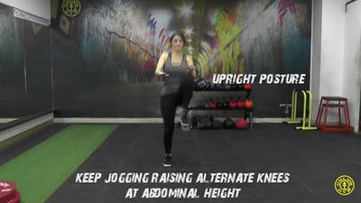 High Knees by Gold's Gym Anywhere