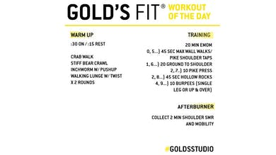 March 26 - GOLD'S FIT by Gold's Gym Anywhere