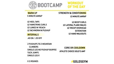 April 1 - BOOTCAMP by Gold's Gym Anywhere