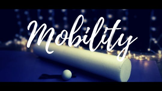 Mobility by Pulse Revolution