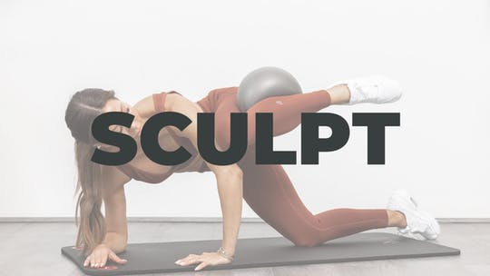 Sculpt by The MVMNT Society